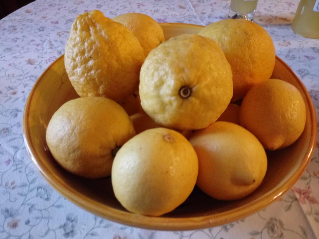 limone malora gargnano